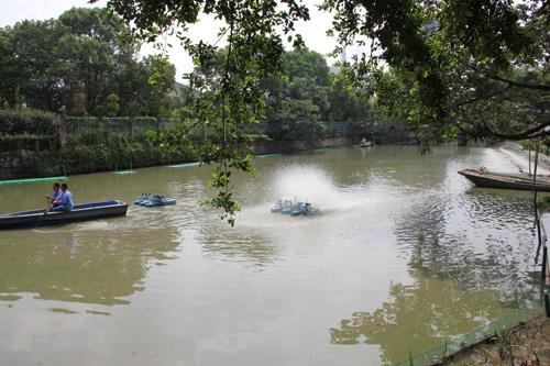 《溫瑞塘河底泥處理處置技術研究項目》